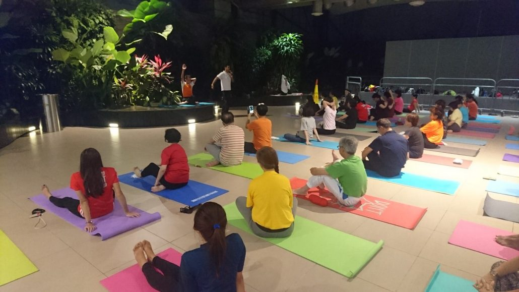Nikam Yoga Junction 8