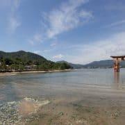Miyajima Torii Gate High Tide